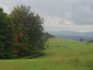 Pointy Knob 17, Canaan Valley Area